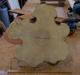 schijf Robinia Acacia hout